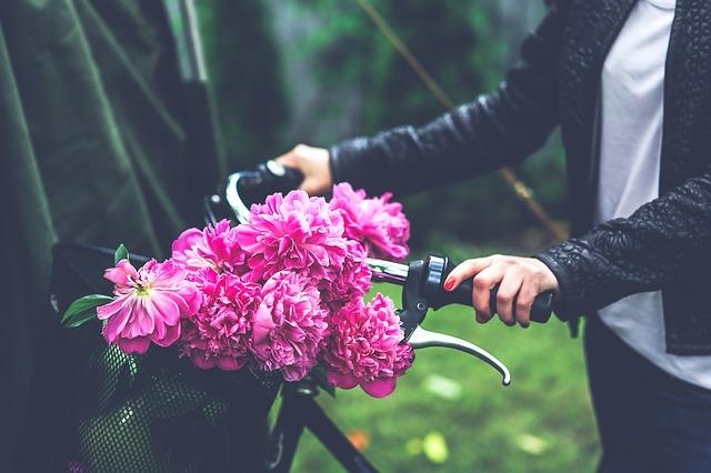 bike-791580_640